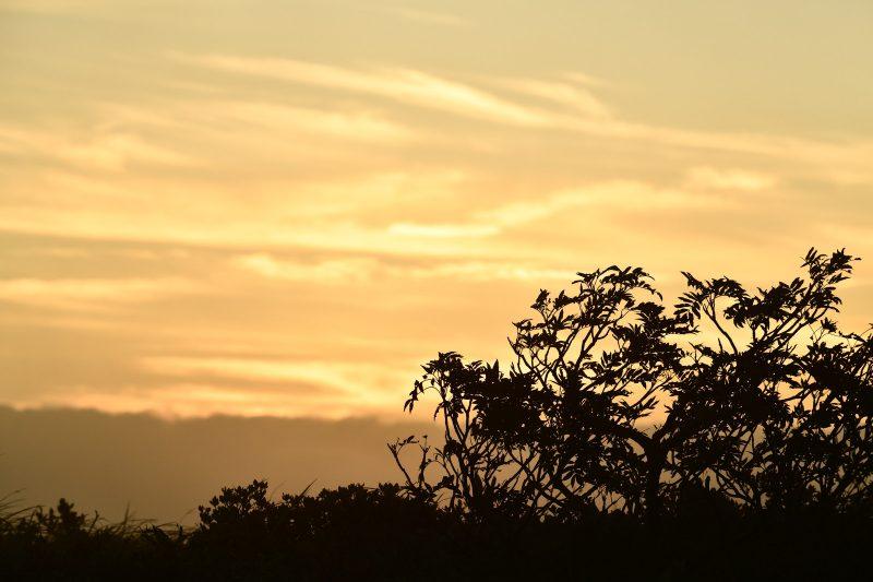 夕日 悲しいイメージ